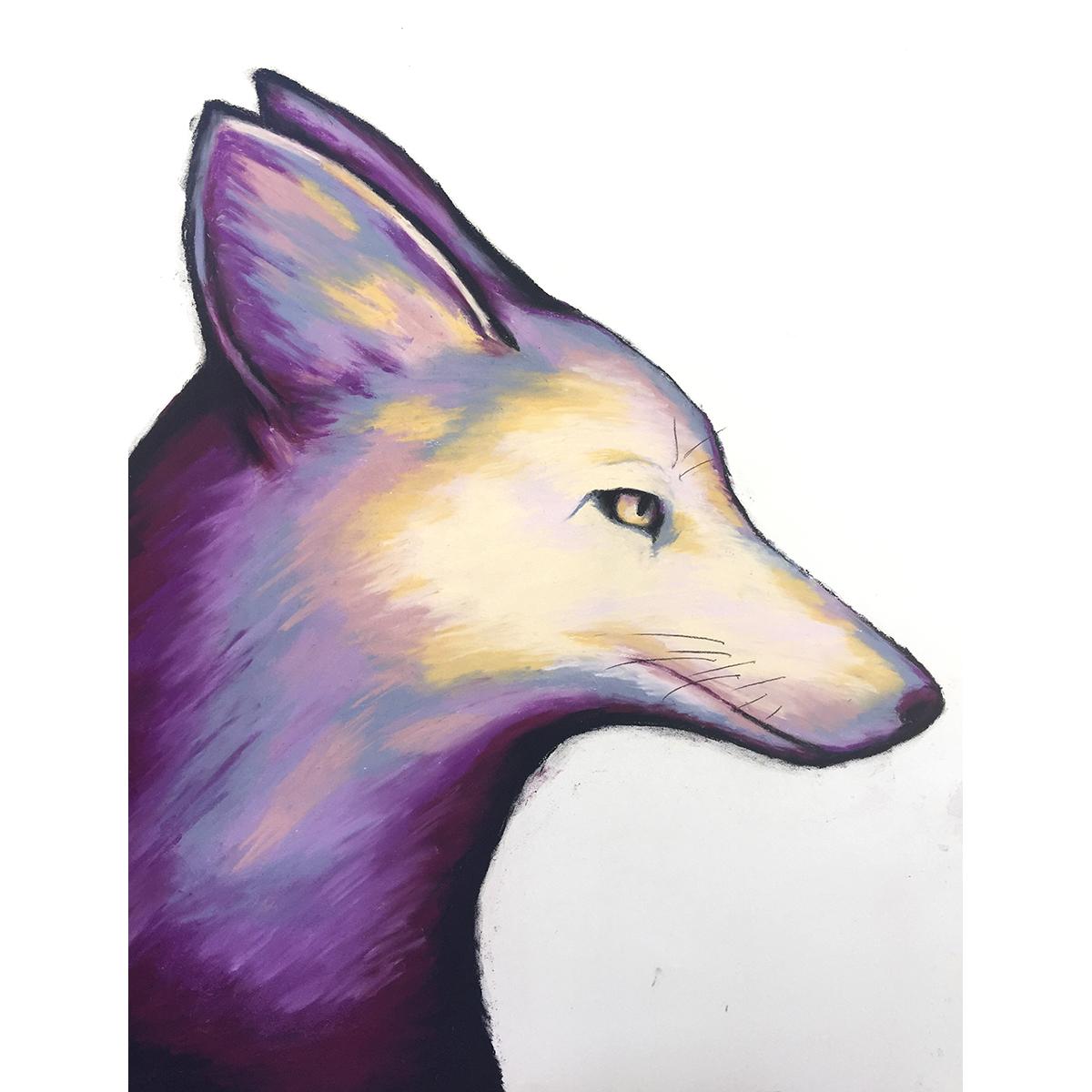 20170807_coyote